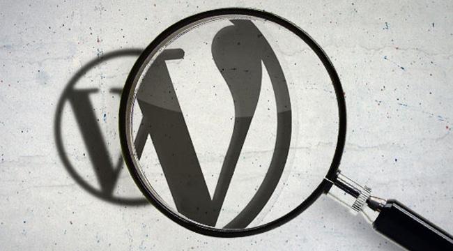 WordPress Site Yedekleme, İçe Aktar ve Dışa Aktar