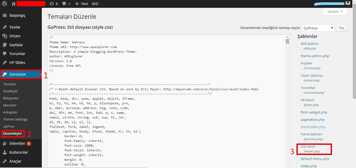 Google Analytics Kodu panel