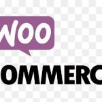 Woocommerce Sidebar Nasıl Gizlenir ? Doğru ve Yanlış Yöntemler